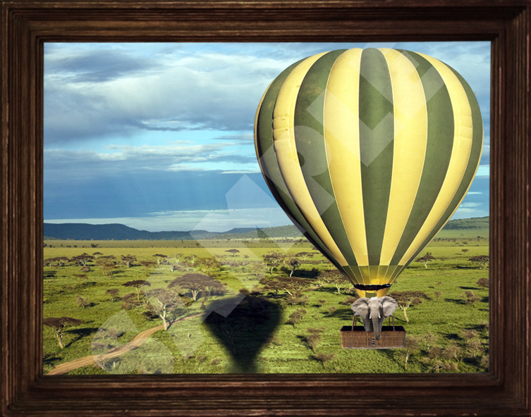 African Safari Zebra Elephant or Tiger Hot Air Balloon 11x14 Print